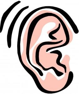 ear-clip-art-14