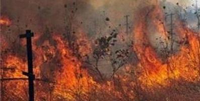 فوری، احتمال ورود آتش به بهبهان /برای جلوگیری از آتش نیروهای محلی، گروههای مردم نهاد یه منطقه اعزام شدهاند