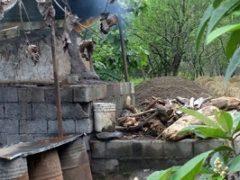 تخریب کورههای ذغالگیری در رضوانشهر