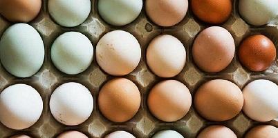 گرانفروشی ۸ هزار تومانی شانه تخممرغ در بازار/ چرا دولت نظارت نمیکند؟